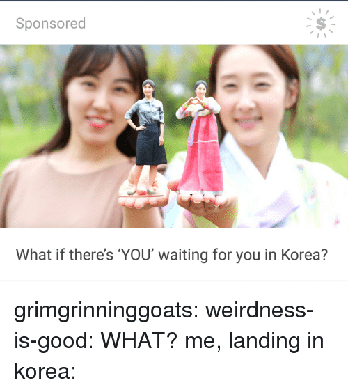 Tumblr, Blog, and Good: Sponsored  What if there's YOU waiting for you in Korea? grimgrinninggoats: weirdness-is-good: WHAT? me, landing in korea: