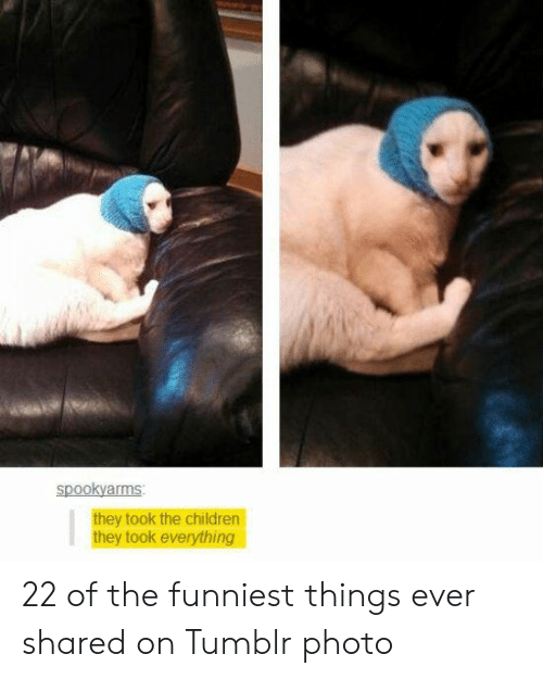 Children, Tumblr, and Photo: spookyarms  they took the children  they took everything 22 of the funniest things ever shared on Tumblr photo