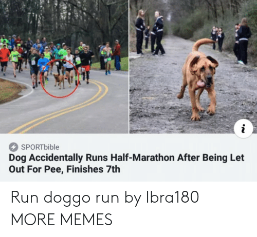 Dank, Memes, and Run: SPORTbible  Dog Accidentally Runs Half-Marathon After Being Let  Out For Pee, Finishes 7th Run doggo run by Ibra180 MORE MEMES