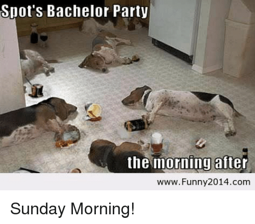 Spots Bachelor Party The Moning After Wwwfunny 2014comm Sunday