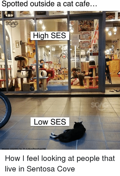 Memes, Live, and 🤖: Spotted outside a cat cafe...  High SES  OPEN  Low SES How I feel looking at people that live in Sentosa Cove