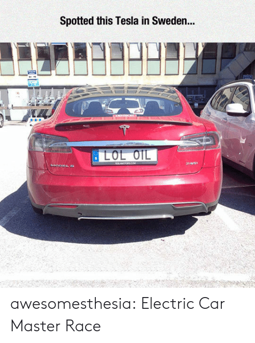 Tumblr, Blog, and Http: Spotted this Tesla in Sweden... awesomesthesia:  Electric Car Master Race