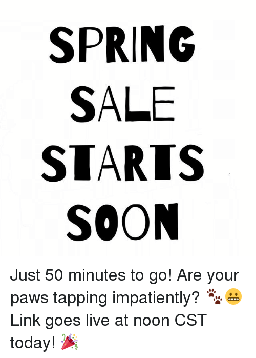 Spring Sale Starts Soon Just 50 Minutes To Go Are Your Paws Tapping Impatiently Link Goes Live At Noon Cst Today Meme On Me Me