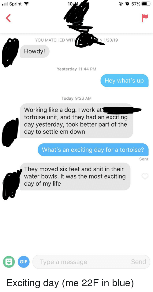 Gif, Life, and Shit: Sprint  YOU MATCHED WITH  N 1/20/19  Howdy!  Yesterday 11:44 PM  Hey what's up  Today 9:26 AM  Working like a dog. I work at  tortoise unit, and they had an excitingg  day yesterday, took better part of the  day to settle em down  What's an exciting day for a tortoise?  Sent  They moved six feet and shit in their  water bowls. It was the most exciting  day of my life  GIF  Type a message  Send Exciting day (me 22F in blue)