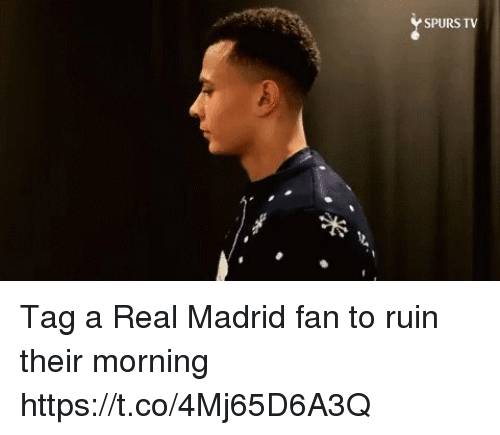 Memes, Real Madrid, and Spurs: SPURS TV Tag a Real Madrid fan to ruin their morning  https://t.co/4Mj65D6A3Q