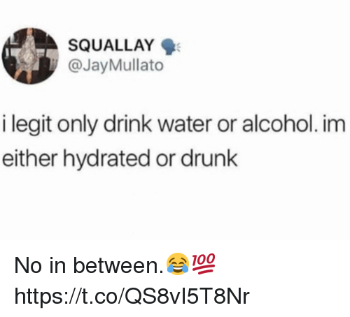 Drunk, Alcohol, and Water: SQUALLAY  @JayMullato  i legit only drink water or alcohol. im  either hydrated or drunk No in between.😂💯 https://t.co/QS8vI5T8Nr