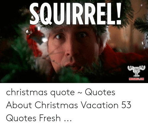Christmas Vacation Quotes.Squirrel Moosemugcom Christmas Quote Quotes About