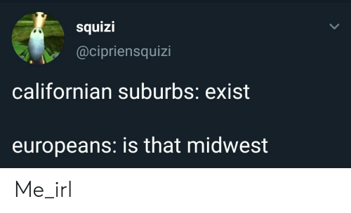 Californian, Irl, and Me IRL: squizi  @cipriensquizi  californian suburbs: exist  europeans: is that midwest Me_irl