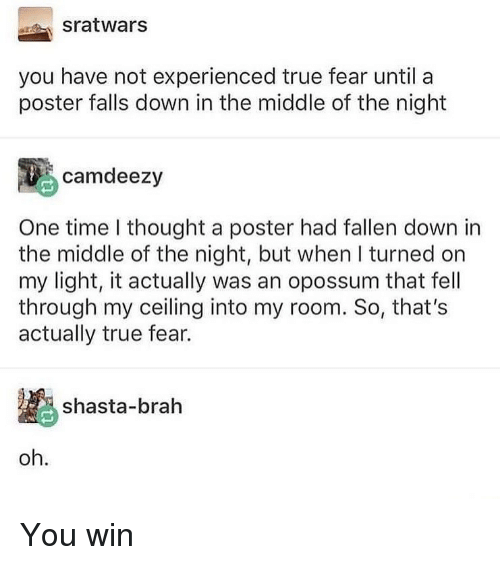 Memes, True, and The Middle: sratwars  you have not experienced true fear until a  poster falls down in the middle of the night  camdeezy  One time I thought a poster had fallen down in  the middle of the night, but when I turned on  my light, it actually was an opossum that fell  through my ceiling into my room. So, that's  actually true fear.  shasta-brah  oh. You win