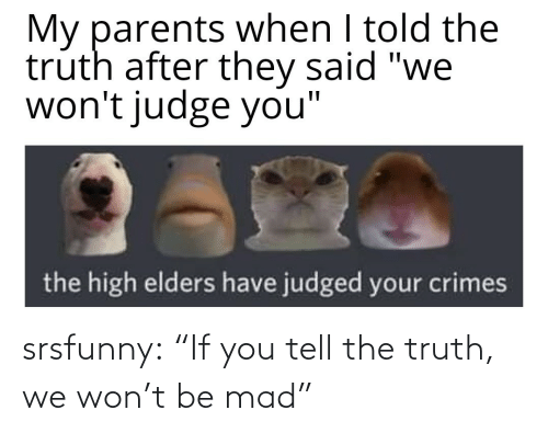 """Tumblr, Blog, and Mad: srsfunny:  """"If you tell the truth, we won't be mad"""""""