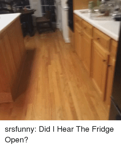 Tumblr, Blog, and Http: srsfunny:  Did I Hear The Fridge Open?