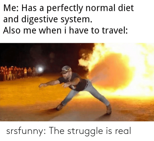 Struggle, The Struggle Is Real, and Tumblr: srsfunny:  The struggle is real