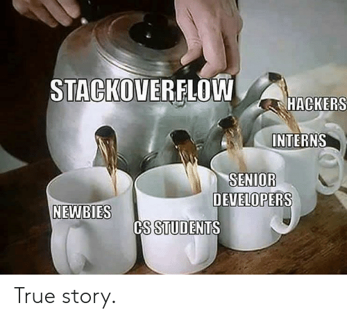 True, True Story, and Hackers: STACKOVERFLOW  HACKERS  INTERNS  SENIOR  DEVELOPERS  NEWBIES  CS STUDENTS True story.