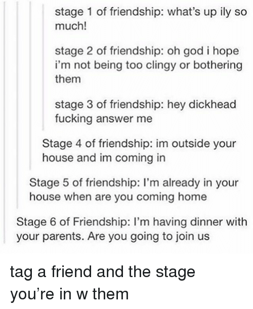Fucking, God, and Parents: stage 1 of friendship: what's up ily so  much!  stage 2 of friendship: oh god i hope  i'm not being too clingy or bothering  them  stage 3 of friendship: hey dickhead  fucking answer me  Stage 4 of friendship: im outside your  house and im coming in  Stage 5 of friendship: I'm already in your  house when are you coming home  Stage 6 of Friendship: I'm having dinner with  your parents. Are you going to join us tag a friend and the stage you're in w them