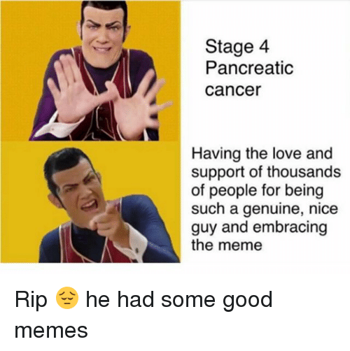 Love, Meme, and Memes: Stage 4  Pancreatic  cancer  Having the love and  support of thousands  of people for being  such a genuine, nice  guy and embracing  the meme Rip 😔 he had some good memes