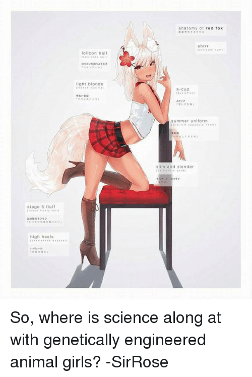 Stage 5 Fluff High Heels Lolicon Bait Light Blonde Anatomy Of Red