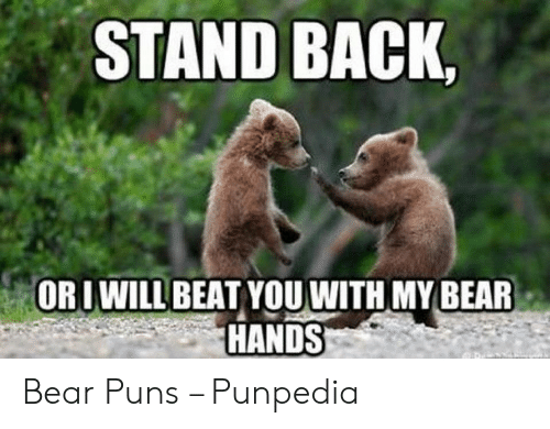 STAND BACK ORLWILL BEAT YOUWITH MY BEAR HANDS Bear Puns