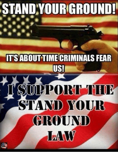 Memes, Fear, and 🤖: STAND YOURGROUND!  ITSABOUTTIME CRIMINALS FEAR  US!  I SUPPORT THI  STAND YOUR  GROUNID