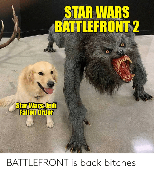 Jedi, Star Wars, and Star: STAR WARS  BATTLEFRONT 2  Star Wars Jedi  Fallen Order BATTLEFRONT is back bitches