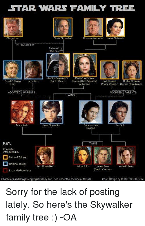 Skywalker and Solo Family images Solos and Skywalkers wallpaper ...