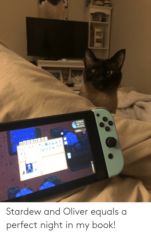 Book, Perfect, and  Night: Stardew and Oliver equals a perfect night in my book!