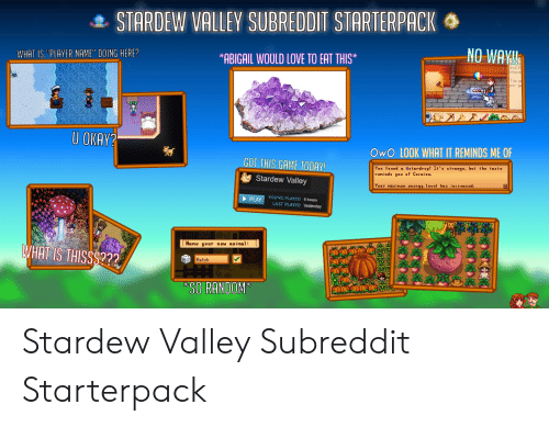 "Energy, Love, and Animal: . STARDEW VALLEY SUBREDDIT STARTERPACK  WHAT IS ""PLAYER NAME"" DOING HERE?  *ABIGAIL WOULD LOVE TO EAT THIS*  nd I'  whoc  The  per g  U OKAY?  OwO LOOK WHAT IT REMINDS ME OF  GOT THIS GAME TODAY  Stardew Valley  PLAY YOU'VE PLAYED 6 hours  You found α stardrop! It's strange, but the taste  reninds gou of Cocaine.  Your maxinun energy level has increased.  LAST PLAYED Yesterday  None your now animal:  WHAT IS THISSS???  Betch  SO RANDOM Stardew Valley Subreddit Starterpack"