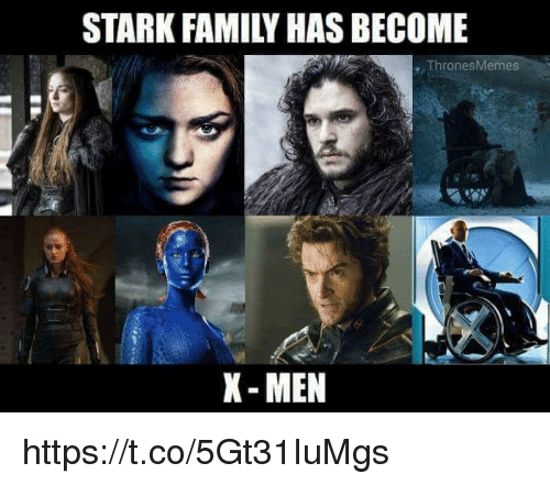 Family, X-Men, and Stark: STARK FAMILY HAS BECOME  ThronesMemes  X- MEN https://t.co/5Gt31IuMgs