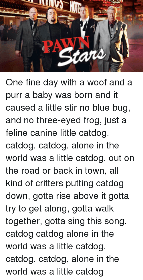 One Fine Day With A Woof And A Purr