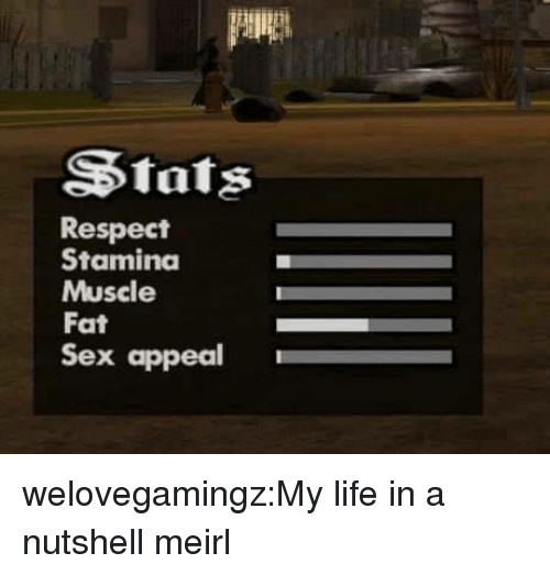 Life, Respect, and Sex: Stats  Respect  Stamina  Muscle  Fat  Sex appeal welovegamingz:My life in a nutshell meirl