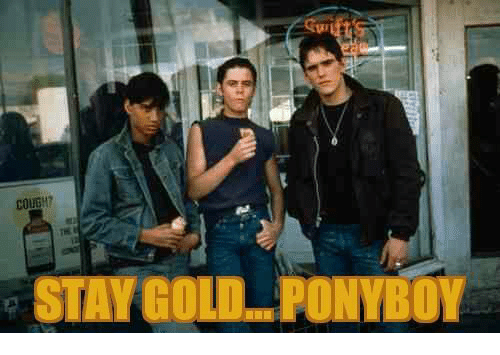 25 Best Stay Gold Pony Boy Memes Stay Gold Memes Ifs Memes Ponyboy Memes So is he saying that in a way that will just make it sink in to ponyboy or does he say it like he is hinting something. 25 best stay gold pony boy memes
