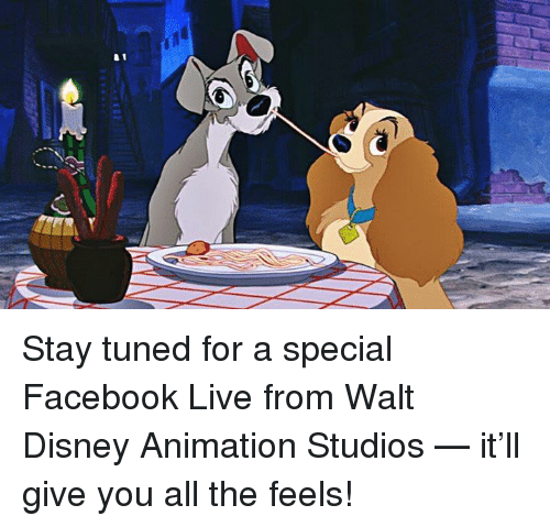 stay tuned for a special facebook live from walt disney 31189638 ✅ 25 best memes about walt disney animation walt disney