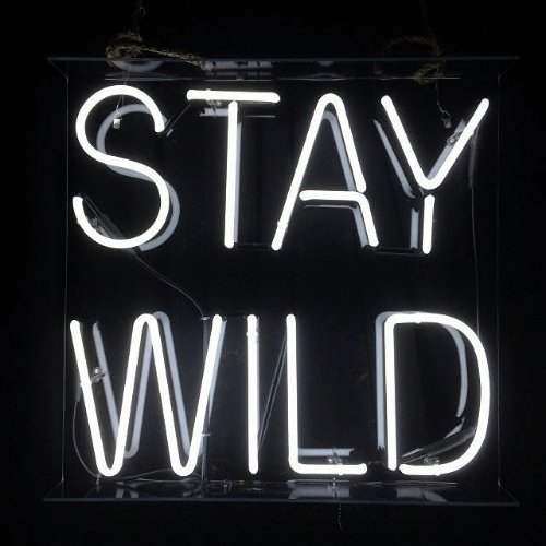 Wild and Stay: STAY  WILD