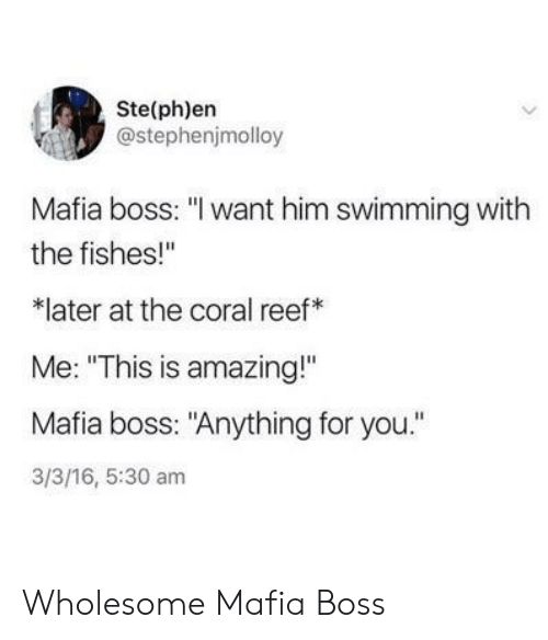 "Amazing, Wholesome, and 16.5: Ste(ph)en  @stephenjmolloy  Mafia boss: ""I want him swimming with  the fishes!""  later at the coral reef  Me: ""This is amazing!""  Mafia boss: ""Anything for you.""  3/3/16, 5:30 am Wholesome Mafia Boss"