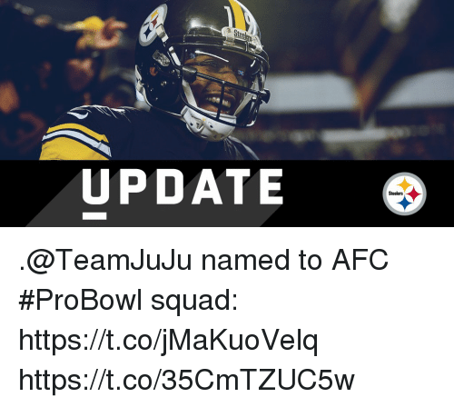 Memes, Squad, and Steelers: Ste  UPDATE  Steelers .@TeamJuJu named to AFC #ProBowl squad: https://t.co/jMaKuoVelq https://t.co/35CmTZUC5w