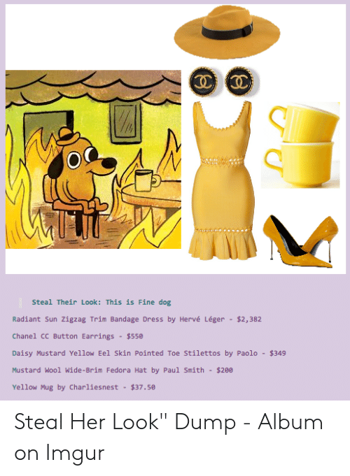 Steal Their Look This Is Fine Dog Radiant Sun Zigzag Trim