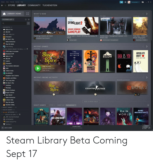 Steam View Friends Games Help O X STORE LIBRARY COMMUNITY
