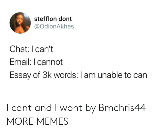 Dank, Memes, and Target: stefflon dont  @OdionAkhes  Chat: I can't  Email: I cannot  Essay of 3k words: I am unable to can I cant and I wont by Bmchris44 MORE MEMES