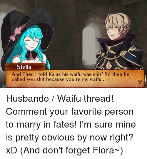Memes, 🤖, and Mine: Stella  And Then I told Kalas his waifu was shit! So then he  called you shit because you're my waifu. Husbando / Waifu thread! Comment your favorite person to marry in fates!  I'm sure mine is pretty obvious by now right? xD (And don't forget Flora~)