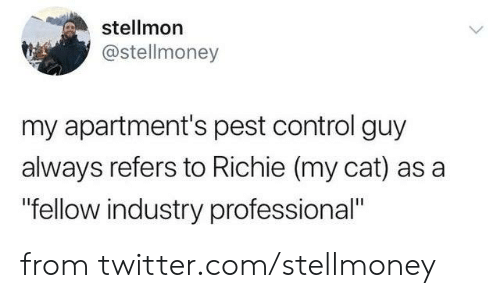 """Dank, Twitter, and Control: stellmon  @stellmoney  my apartment's pest control guy  always refers to Richie (my cat) as a  """"fellow industry professional"""" from twitter.com/stellmoney"""