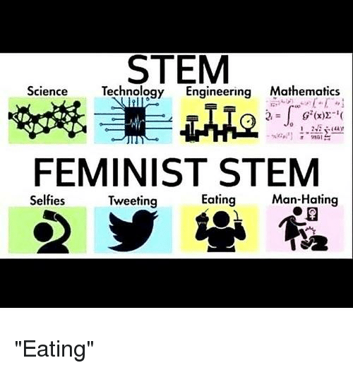 Science Technology Engineering Math: Topic: Girls In STEM.