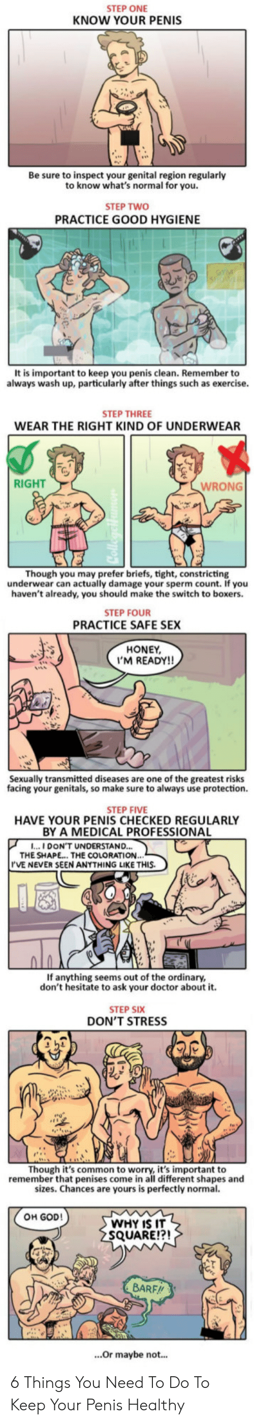 Doctor, God, and Sex: STEP ONE  KNOW YOUR PENIS  Be sure to inspect your genital region regularly  to know what's normal for you.  STEP TWO  PRACTICE GOOD HYGIENE  It is important to keep you penis clean. Remember to  always wash up, particularly after things such as exercise.  STEP THREE  WEAR THE RIGHT KIND OF UNDERWEAR  RIGHT  WRONG  Though you may prefer briefs, tight, constricting  underwear can actually damage your sperm count. If you  haven't already, you should make the switch to boxers.  STEP FOUR  PRACTICE SAFE SEX  HONEY  'M READY!!  Sexually transmitted diseases are one of the greatest risks  facing your genitals, so make sure to always use protection.  STEP FIVE  HAVE YOUR PENIS CHECKED REGULARLY  BY A MEDICAL PROFESSIONA  ...I DON'T UNDERSTAND...  THE SHAPE... THE COLORATION.  'VE NEVER SEEN ANYTHING LIKE THIS.  If anything seems out of the ordinary,  don't hesitate to ask your doctor about it.  STEP SIX  DON'T STRESS  Though it's common to worry, it's important to  remember that penises come in all different shapes and  sizes. Chances are yours is perfectly normal.  OH GOD!  WHY IS IT  SQUARE!?!  BARF//  ...Or maybe not... 6 Things You Need To Do To Keep Your Penis Healthy