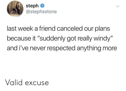 """Never, Got, and Friend: steph  @stephsstone  last week a friend canceled our plans  because it """"suddenly got really windy""""  and i've never respected anything more Valid excuse"""