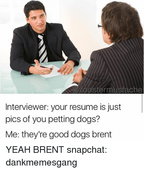 Theyre Good Dogs Brent
