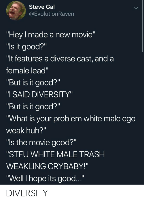 "Huh, Stfu, and Trash: Steve Gal  @EvolutionRaven  ""Hey made a new movie""  ""ls it good?""  ""It features a diverse cast, and a  female lead""  ""But is it good?""  ""I SAID DIVERSITY""  ""But is it good?""  ""What is your problem white male ego  weak huh?""  ""ls the movie good?""  ""STFU WHITE MALE TRASH  WEAKLING CRYBABY!""  ""Well I hope its good..."" DIVERSITY"