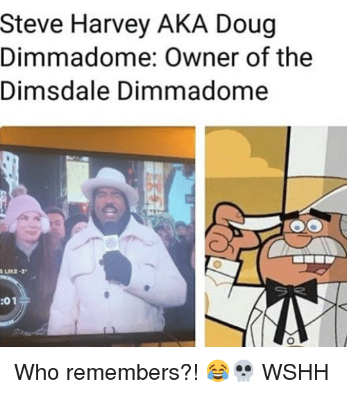 Doug, Memes, and Steve Harvey: Steve Harvey AKA Doug  Dimmadome: Owner of the  Dimsdale Dimmadome  :01 Who remembers?! 😂💀 WSHH
