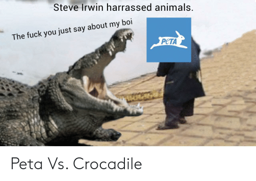 Animals, Fuck You, and Steve Irwin: Steve Irwin harrassed animals  The fuck you just say about my boi  PCTA Peta Vs. Crocadile