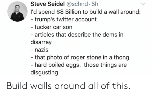 Politics, Roger, and Twitter: Steve Seidel @schnd 5h  I'd spend $8 Billion to build a wall around:  trump's twitter account  - fucker carlson  - articles that describe the dems in  disarray  - naziS  that photo of roger stone in a thong  hard boiled eggs. those things are  disgusting Build walls around all of this.