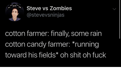 Candy, Zombies, and Rain: Steve vs Zombies  @stevevsninjas  cotton farmer: finally, some rain  cotton candy farmer: *running  toward his fields* oh shit oh fuck