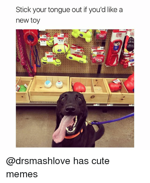 Cute, Funny, and Memes: Stick your tongue out if you'd like a  new toy @drsmashlove has cute memes