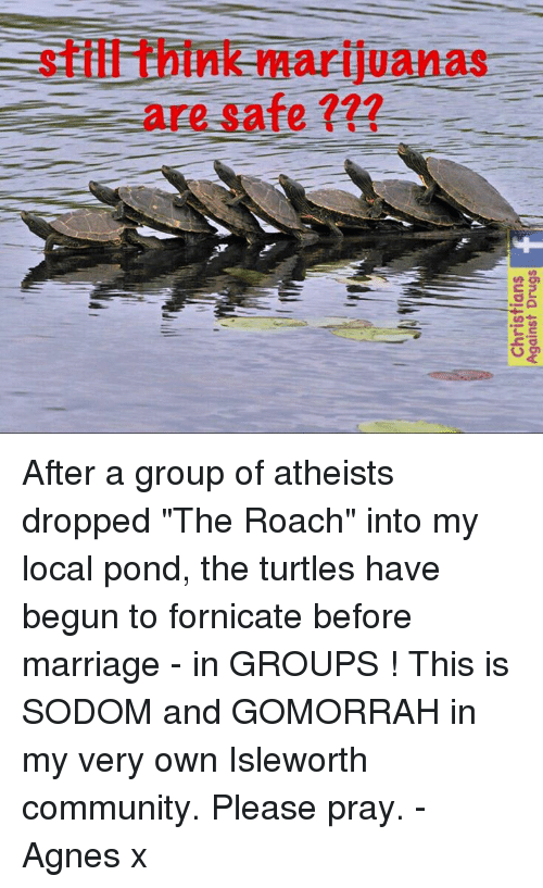 fornicate